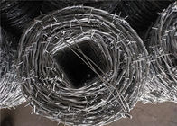 Price Meter Security Barbed Wire In Egypt Zinc Coated 15kg / Coil Weight